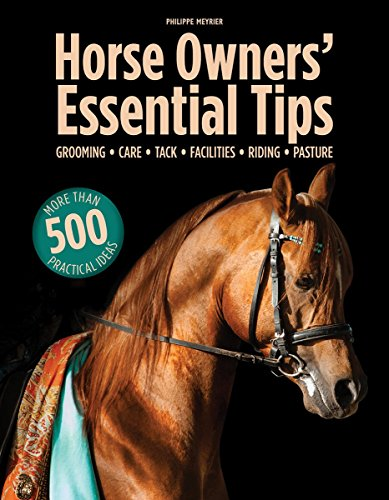 Essential Tips for Horse Owners